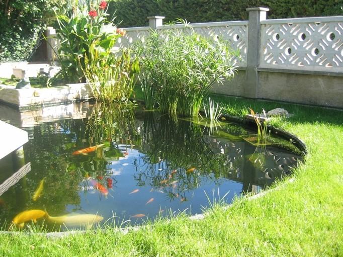 Installer un bassin dans votre jardin une plus value assur e for Bassin a poisson sans bache